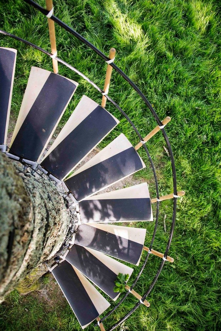 amazing-spiral-staircase-you-can-strap-onto-any-tree-without-tools-57039