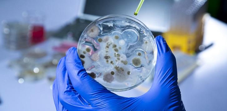 antybiotyki-apokalipsa