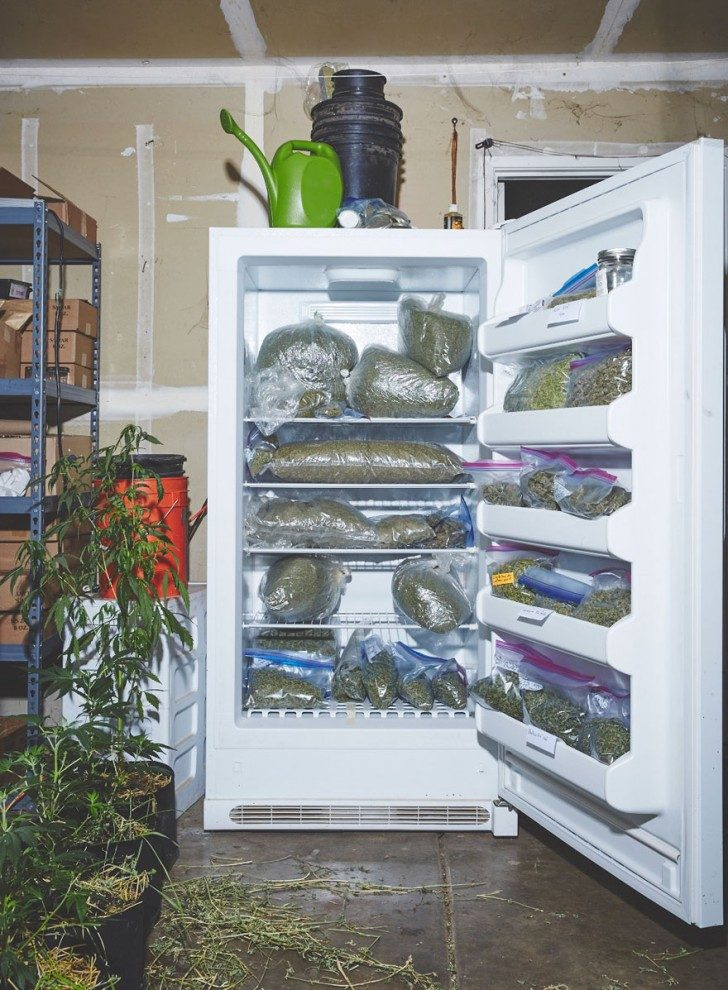 nuns-growing-weed-to-heal-the-world-88919