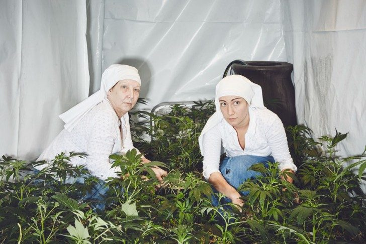 nuns-growing-weed-to-heal-the-world-93781