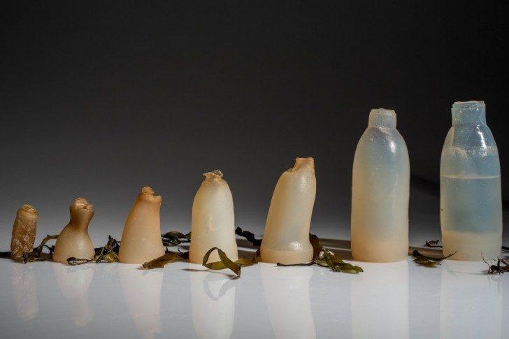 Algae-Water-Bottle-Ari-Jónsson-889x592