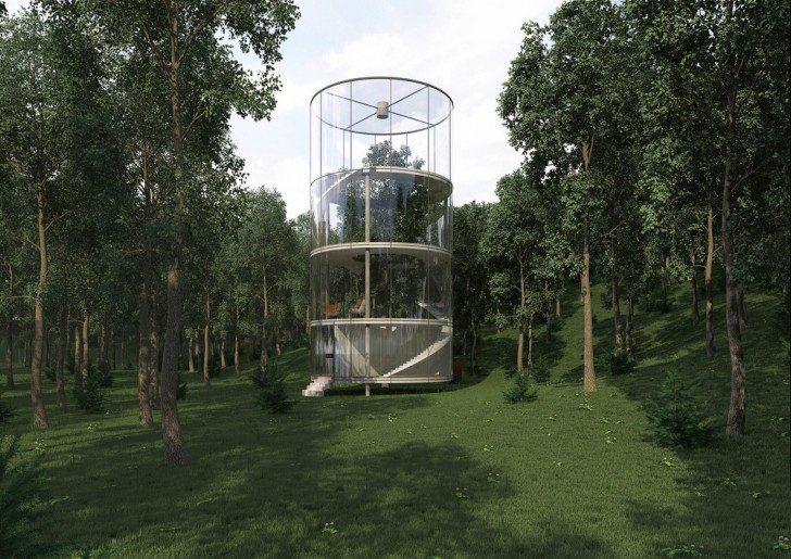 dom-drzewo-1