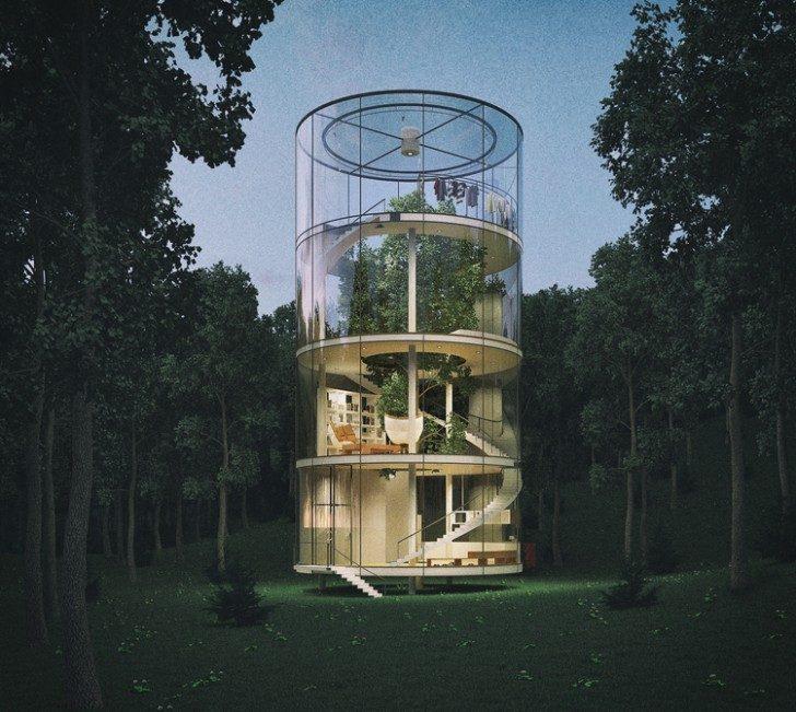 dom-drzewo-2