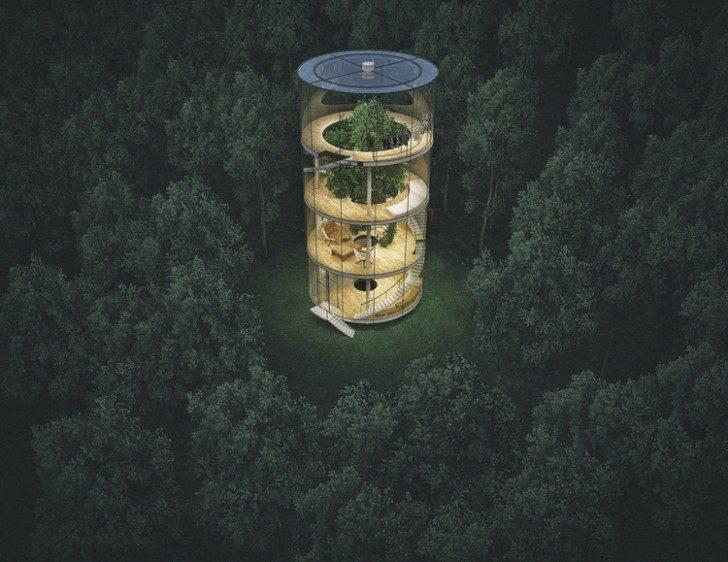 dom-drzewo-3