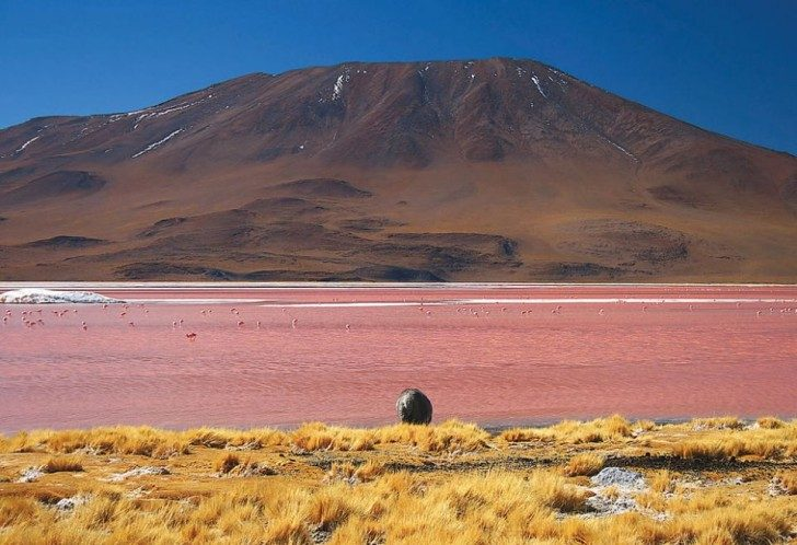 lagoona-colorada-1