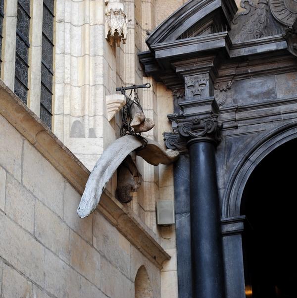 Kości mamutów przy katedrze na Wawelu.