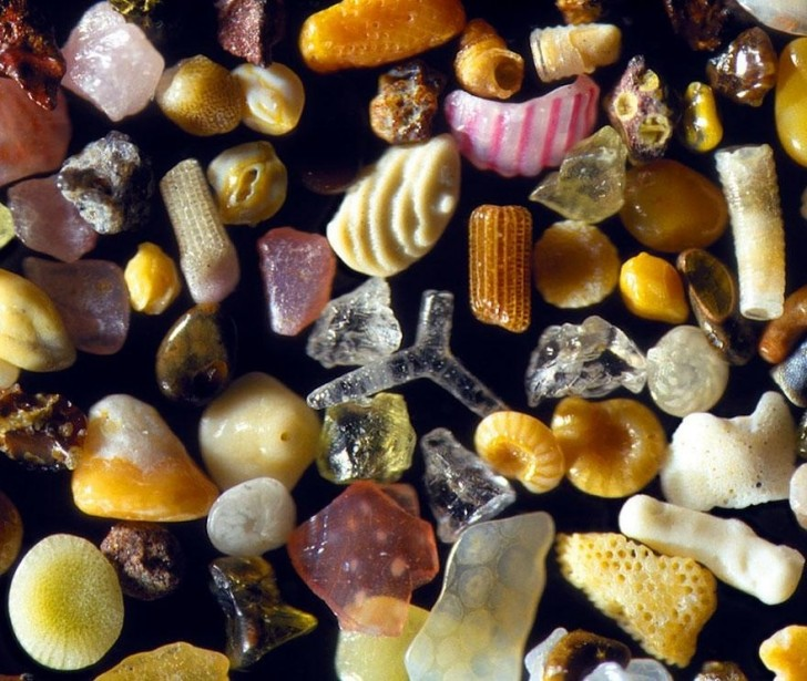 Ziarenka piasku pod mikroskopem
