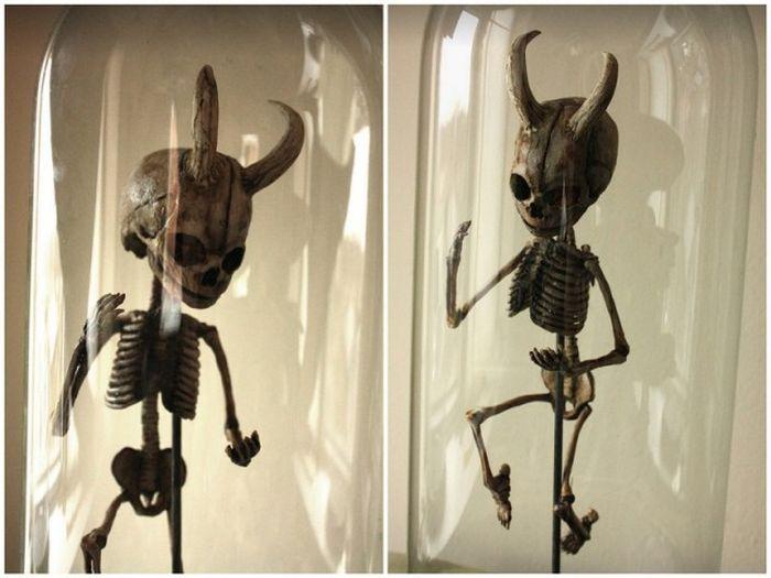 strange_creatures_13