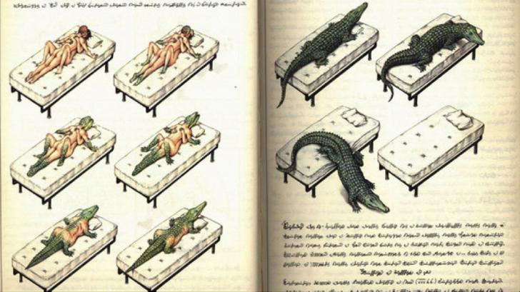 Codex Seraphinianus – najdziwniejsza encyklopedia na świecie