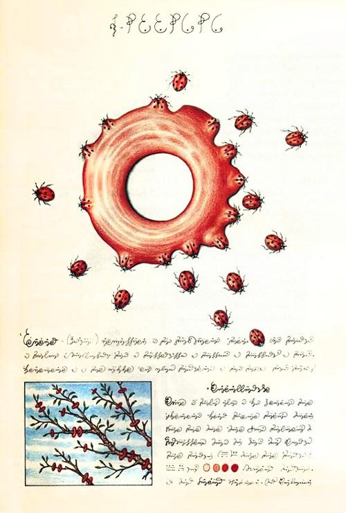 codexseraphinianus6