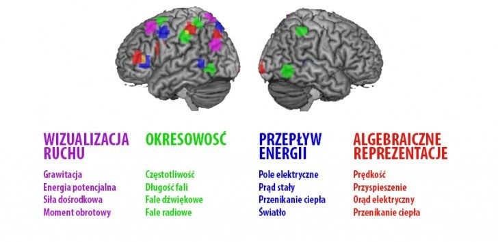 brain_repurpose_853x480-min
