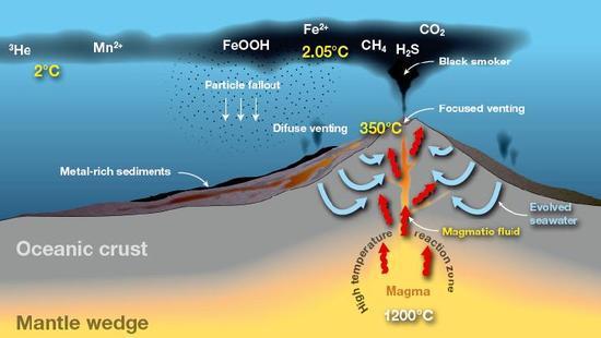 Diagram przedstawiający działanie komina hydrotermalnego. Źródło: gns.cri.nz