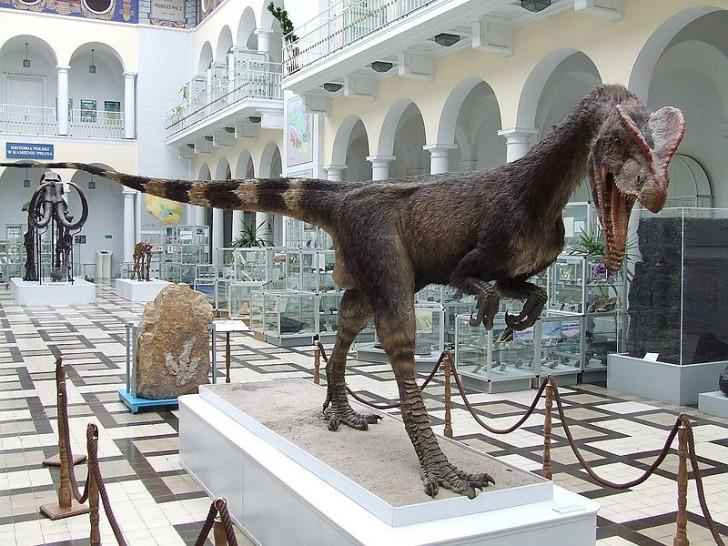 800px-dilofozaur_pgi