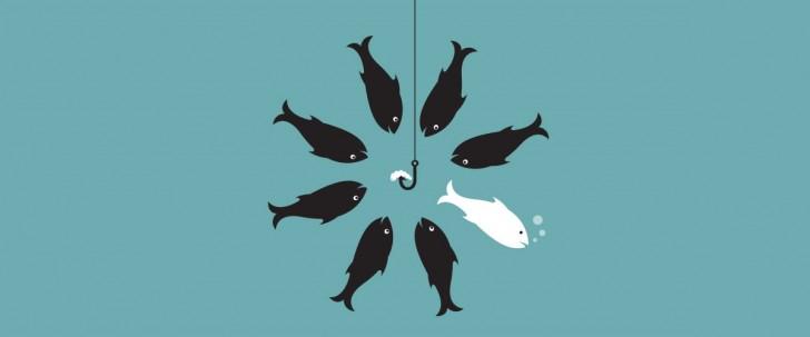 onedifferentfish_blog