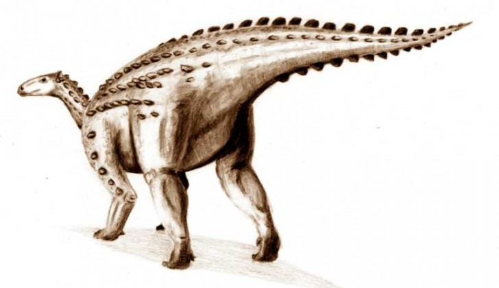 scelidosaurus2