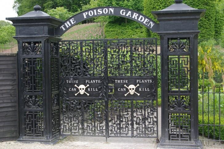 alnwick-garden-poiison-gates-gardenista