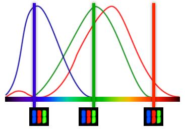 color-cones-bars