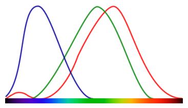 color-cones