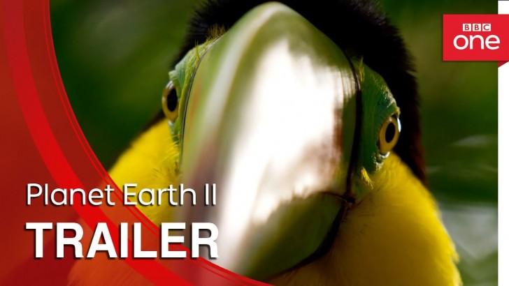 """Trailer nowej serii przyrodniczych filmów dokumentalnych BBC """"Planet Earth II"""""""