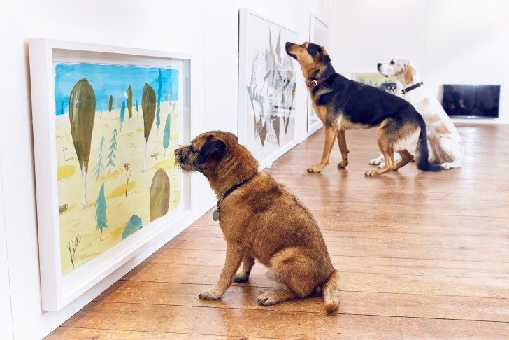 buck_dogs_exhibition-1