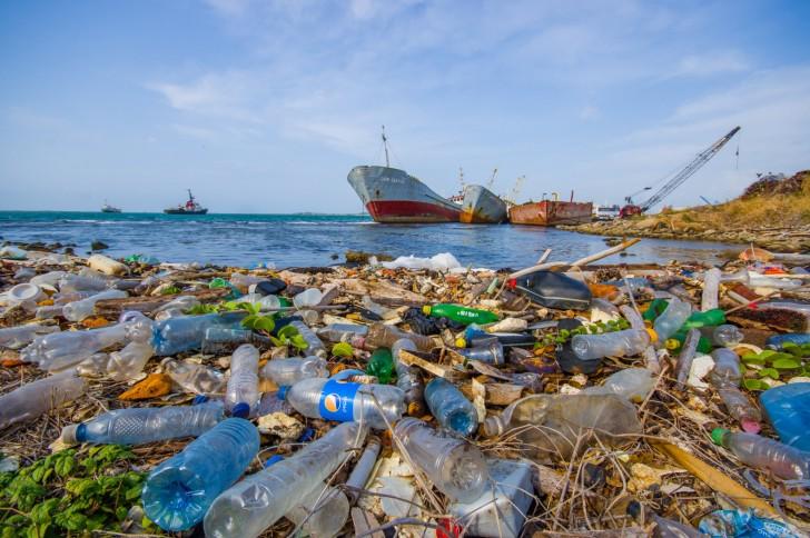 Zdjęcie przedstawia stertę plastikowych śmieci wyrzuconych przez morze na plażę.