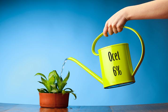 """Obrazek przedstawia konewkę z napisem """"Ocet 6%"""", przy pomocy której podlewana jest roślina."""