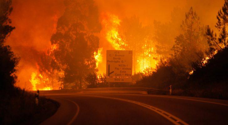 Na zdjęciu widoczna asfaltowa droga prowadząca przez płonący las w Portugalii.