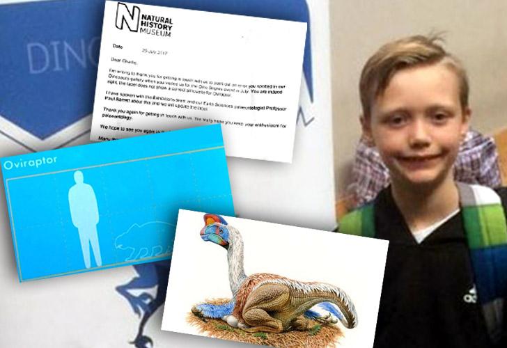 10-latek znalazł błąd londyńskiego Muzeum Historii Naturalnej