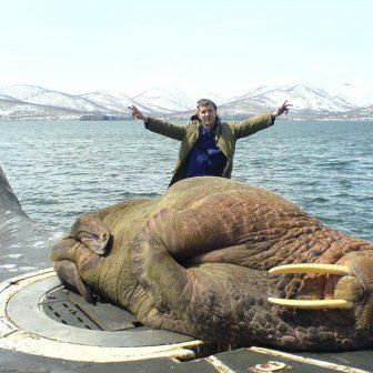 Mors śpiący na rosyjskiej atomowej łodzi podwodnej