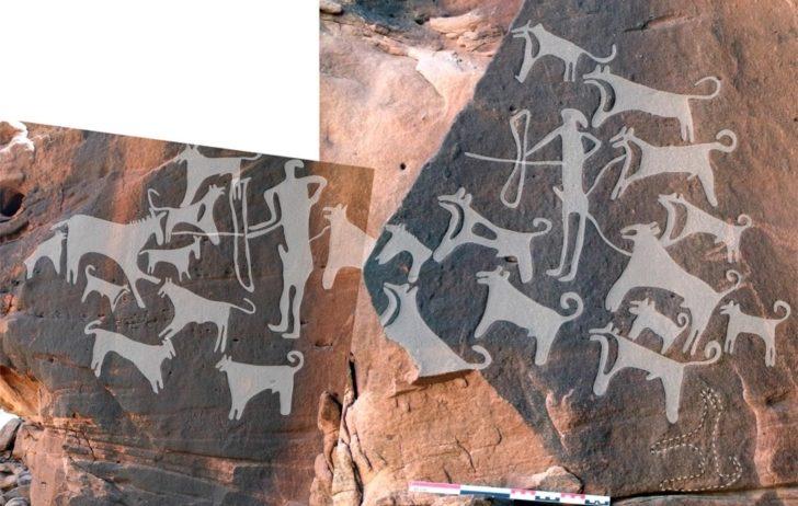 Zdjęcie przedstawia opisane w artykule petroglify. Myśliwi otoczeni przez kilkanaście psów, polują na zwierzynę. Niektóre psy przywiązane są na smyczach do ludzi. Większość biega jednak wolno.
