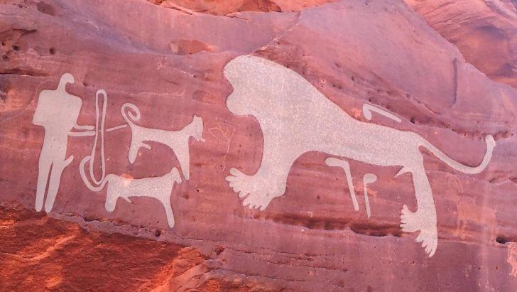 Zdjęcie przedstawia myśliwego z dwójką psów podczas polowania na lwa.