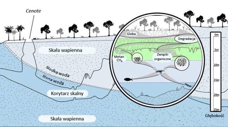 Obrazek przedstawia przekrój przez system podziemnych jaskiń.