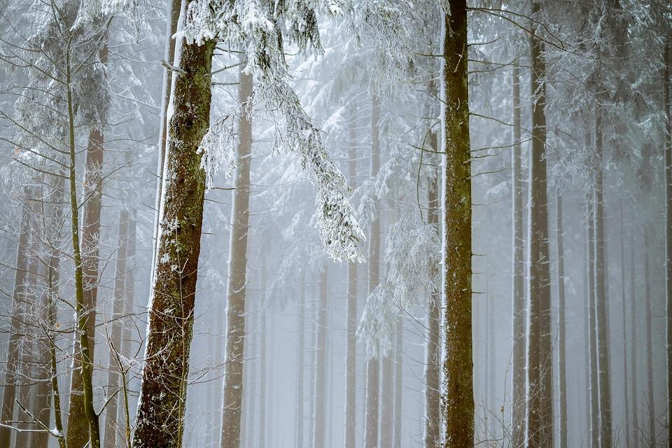Nietypowe miejsce na zimowy wyjazd integracyjny