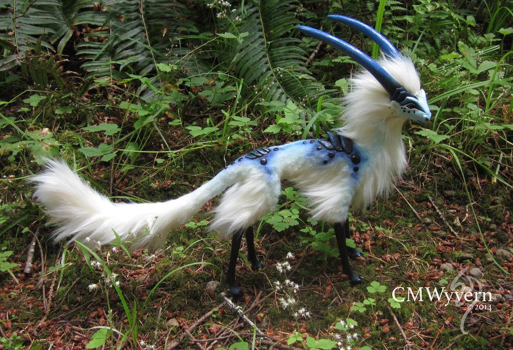 Zwierzęta o unikalnym wyglądzie - trudno uwierzyć, że istnieją naprawdę