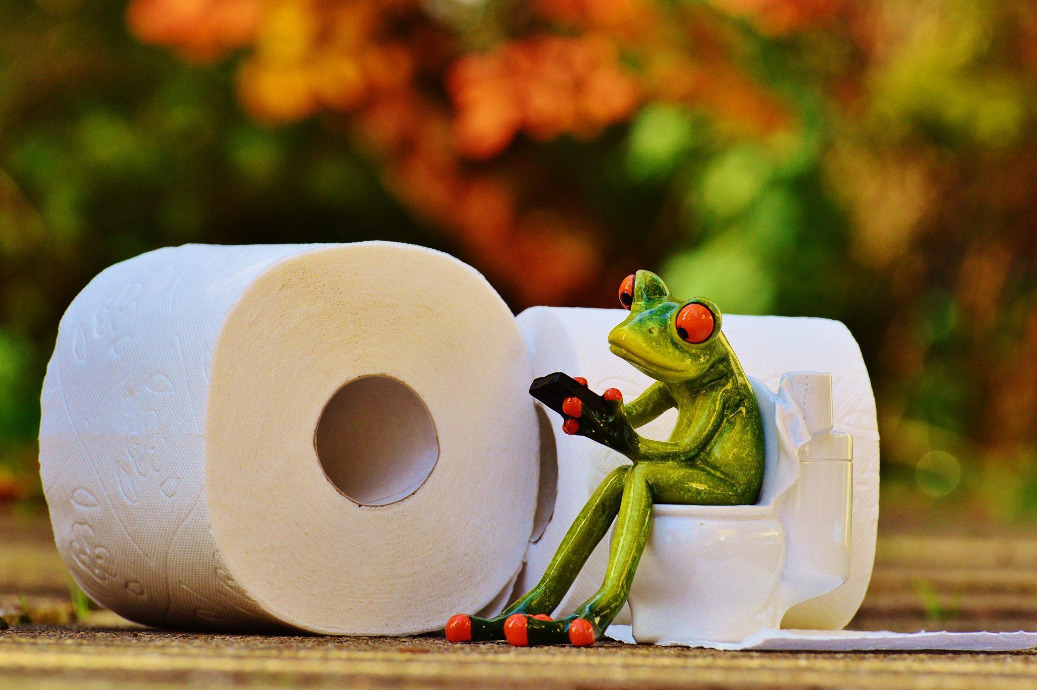 Władza zza tronu, czyli szara eminencja toalety