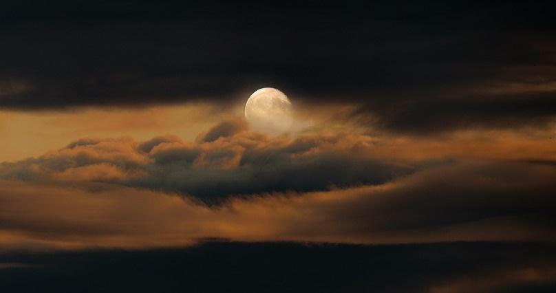 Zimny Księżyc
